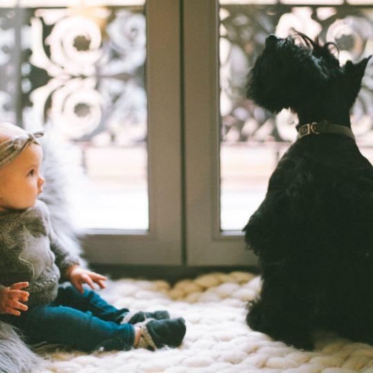 Koji su to najbolji kućni ljubimci za malu decu?